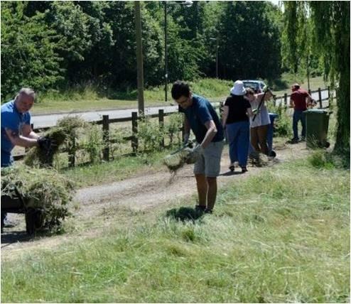 Planting Up - Garden tidy