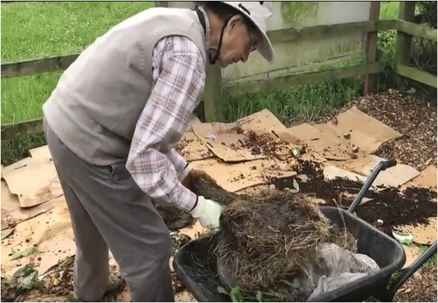Planting Up - Mulch beds