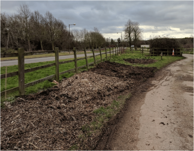 Planting Up - Forest Garden beds