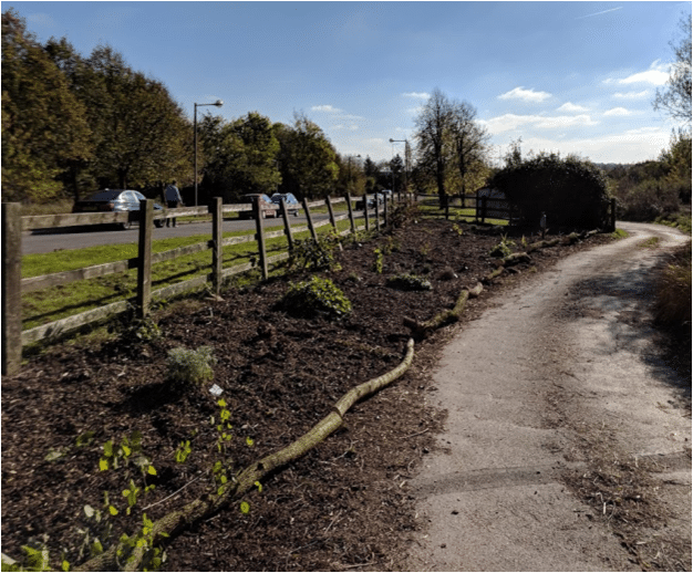 End of 2018 Planted Up permaculture plot