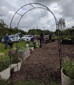 Weeding the social area plot