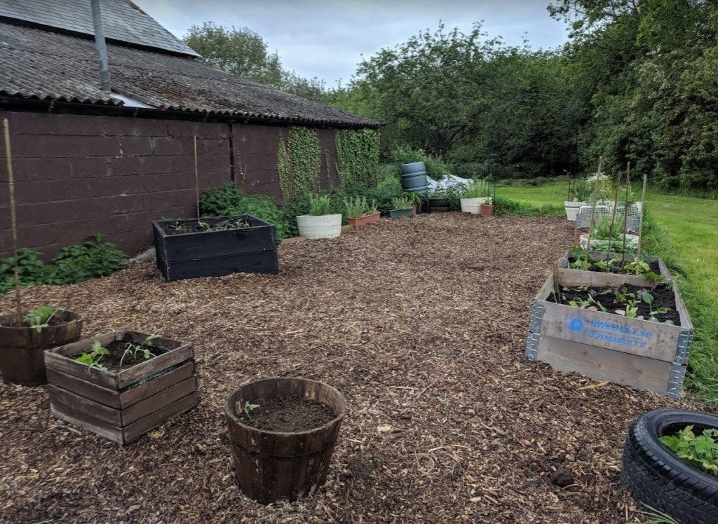 Transformation complete PLANTING UP our permaculture community garden social area