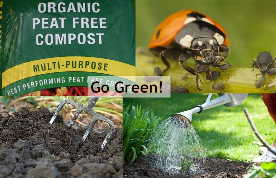 Go green - choose peat free compost