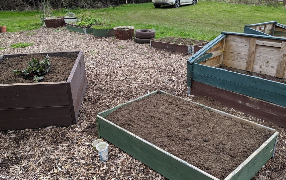 Our raised beds ready for planting