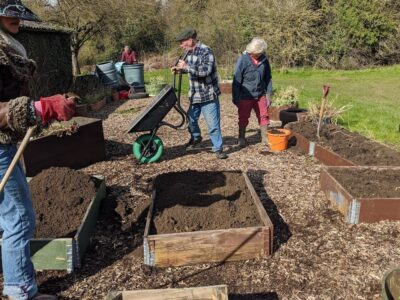 Creating single-storey raised beds